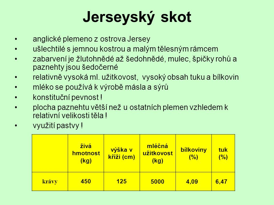 Jerseyský skot anglické plemeno z ostrova Jersey ušlechtilé s jemnou kostrou a malým tělesným rámcem zabarvení je žlutohnědé až šedohnědé, mulec, špič