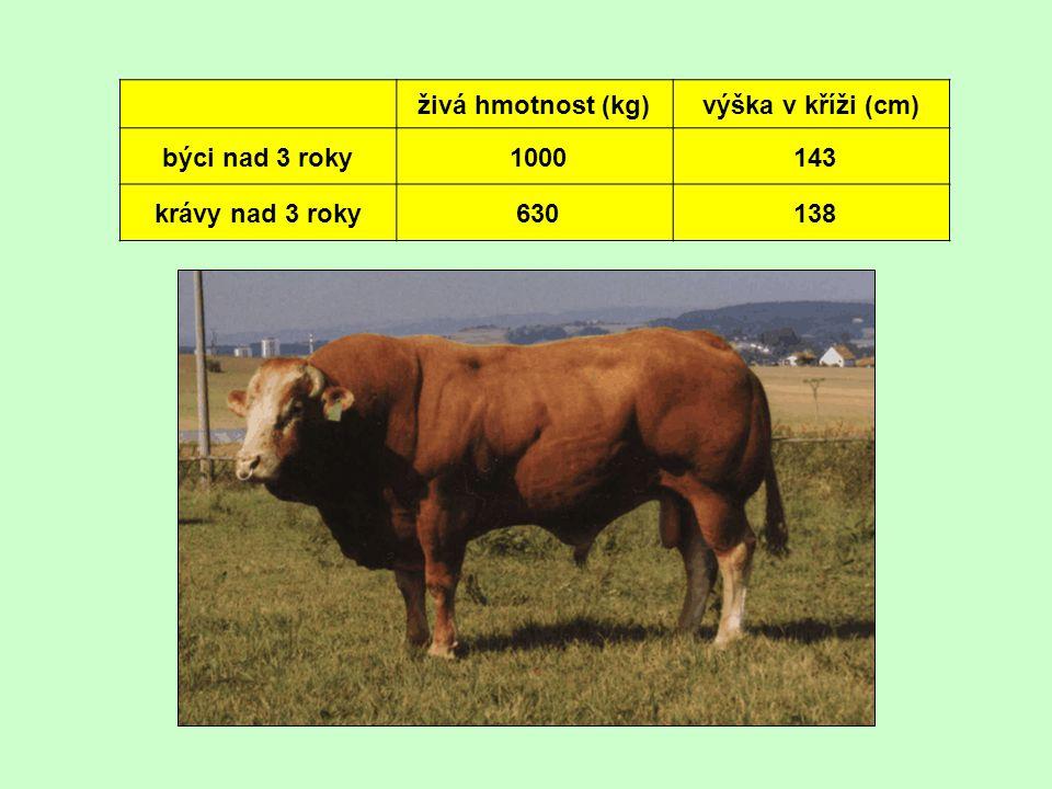 živá hmotnost (kg)výška v kříži (cm) býci nad 3 roky 1000 143 krávy nad 3 roky 630 138