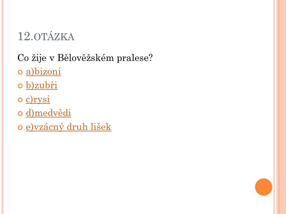 12. OTÁZKA Co žije v Bělověžském pralese? a)bizoni b)zubři c)rysi d)medvědi e)vzácný druh lišek