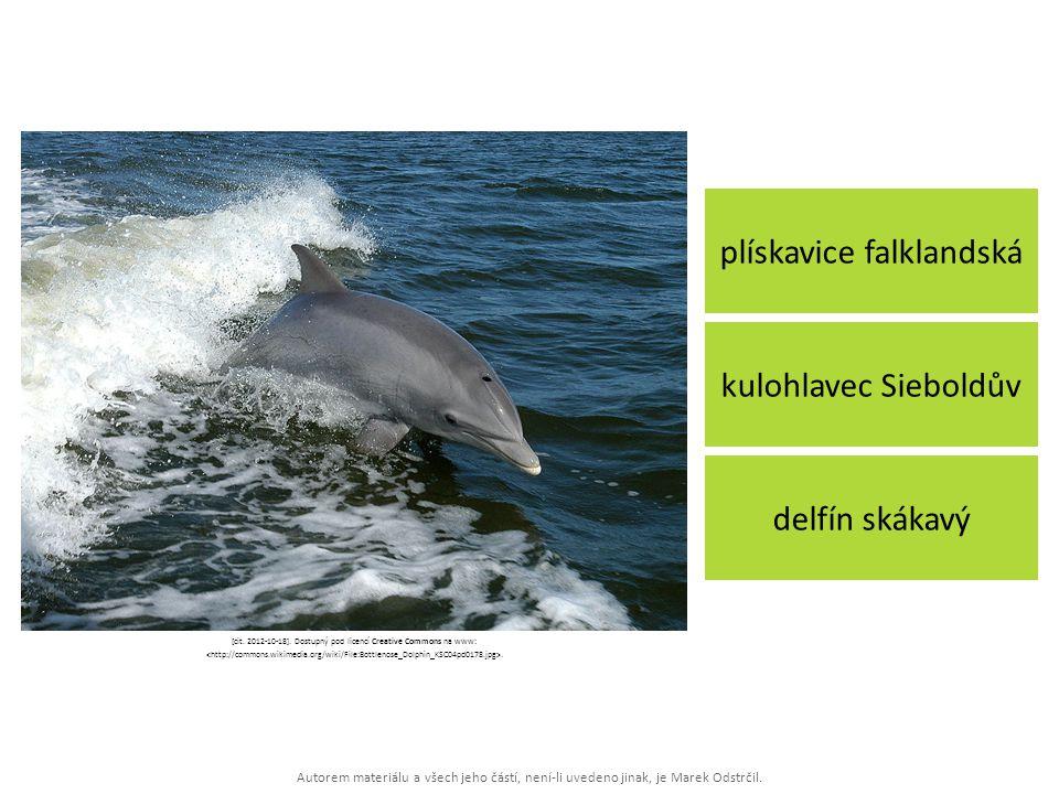 Autorem materiálu a všech jeho částí, není-li uvedeno jinak, je Marek Odstrčil. plískavice falklandská delfín skákavý kulohlavec Sieboldův [cit. 2012-