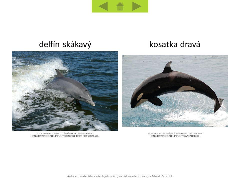 Autorem materiálu a všech jeho částí, není-li uvedeno jinak, je Marek Odstrčil. kosatka dravádelfín skákavý [cit. 2012-10-18]. Dostupný pod licencí Cr