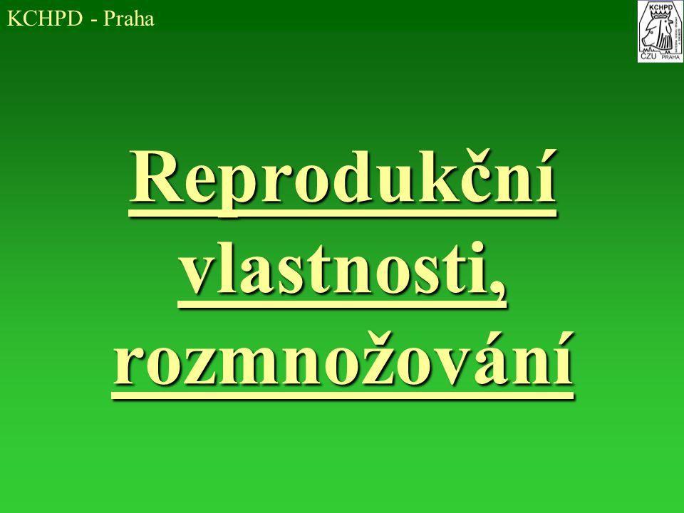 Reprodukční vlastnosti, rozmnožování KCHPD - Praha