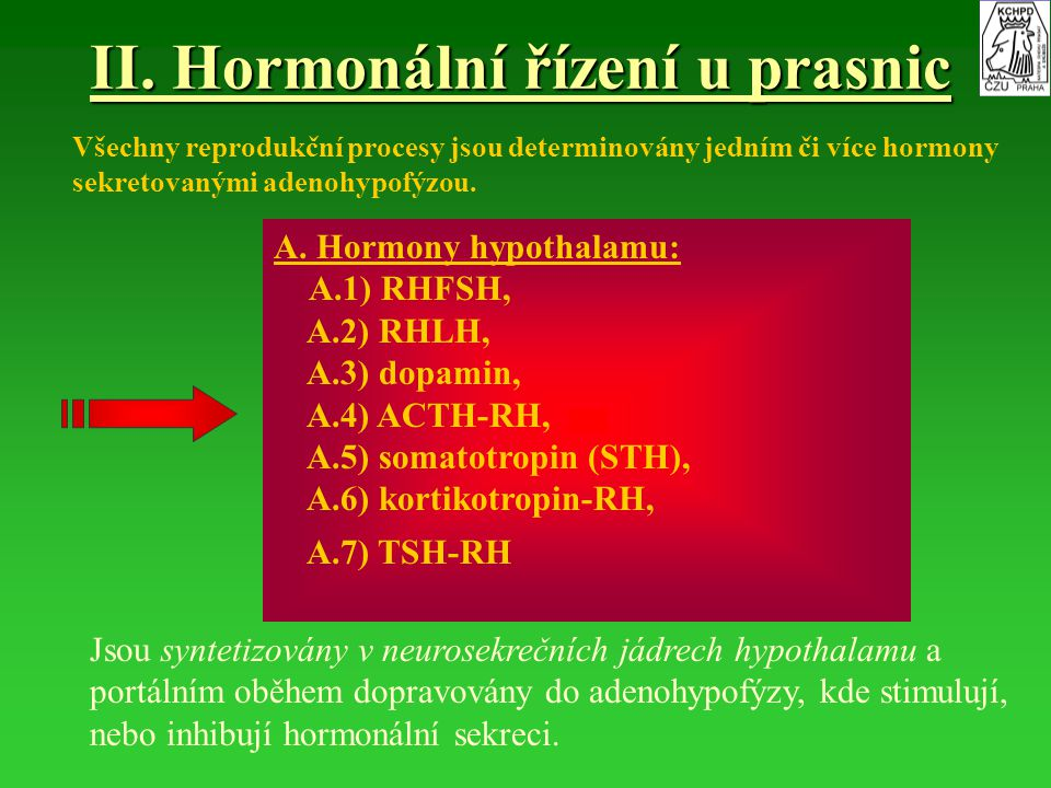 II. Hormonální řízení u prasnic A. Hormony hypothalamu: A.1) RHFSH, A.2) RHLH, A.3) dopamin, A.4) ACTH-RH, A.5) somatotropin (STH), A.6) kortikotropin