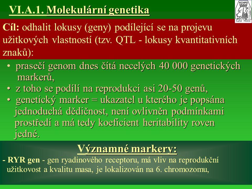 Molekulární genetika VI.A.1. Molekulární genetika Cíl: odhalit lokusy (geny) podílející se na projevu užitkových vlastností (tzv. QTL - lokusy kvantit