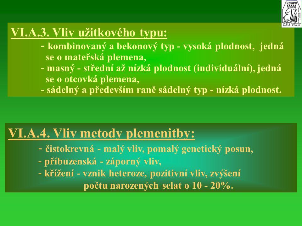 VI.A.3. Vliv užitkového typu: - - kombinovaný a bekonový typ - vysoká plodnost, jedná se o mateřská plemena, - - masný - střední až nízká plodnost (in