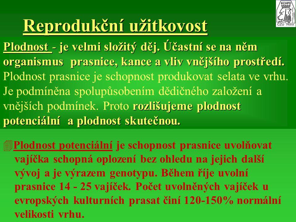 IV.Dědičné a nedědičné vlivy působící na plodnost VI.A.