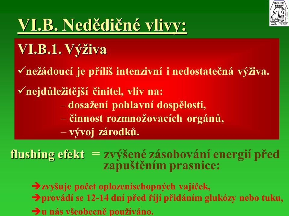 VI.B. Nedědičné vlivy: VI.B.1. Výživa nežádoucí je příliš intenzivní i nedostatečná výživa. nejdůležitější činitel, vliv na: – – dosažení pohlavní dos