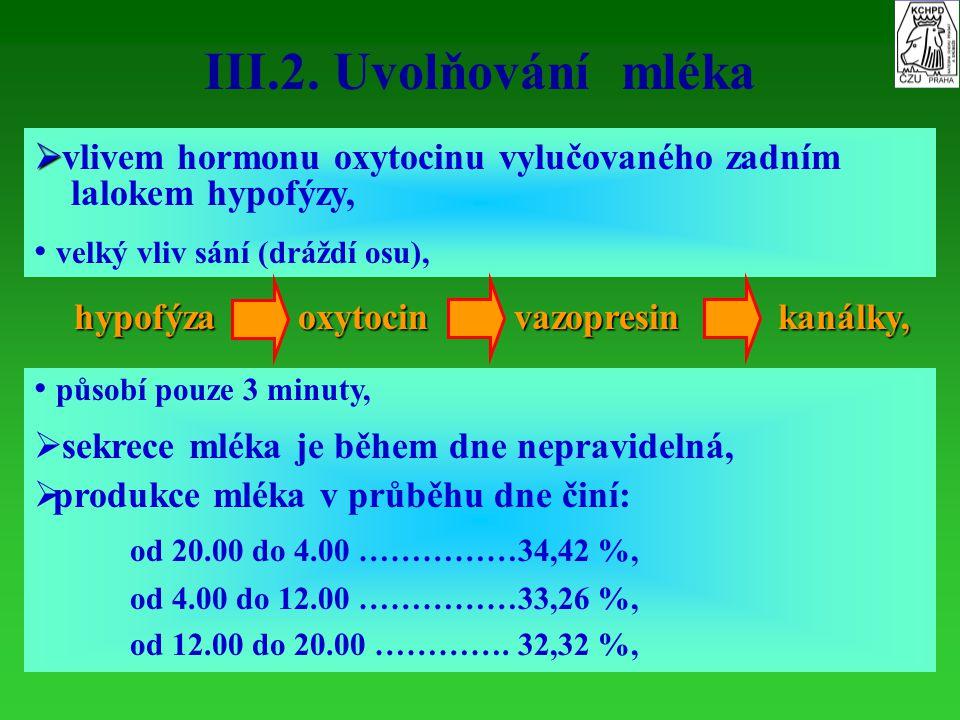 III.2. Uvolňování mléka   vlivem hormonu oxytocinu vylučovaného zadním lalokem hypofýzy, velký vliv sání (dráždí osu), hypofýzaoxytocinvazopresinkan