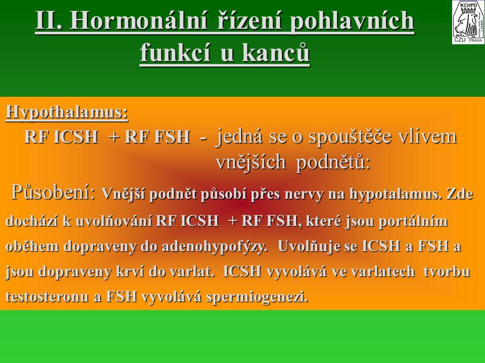 Hypothalamus: RF ICSH + RF FSH - jedná se o spouštěče vlivem RF ICSH + RF FSH - jedná se o spouštěče vlivem vnějších podnětů: vnějších podnětů: Působe