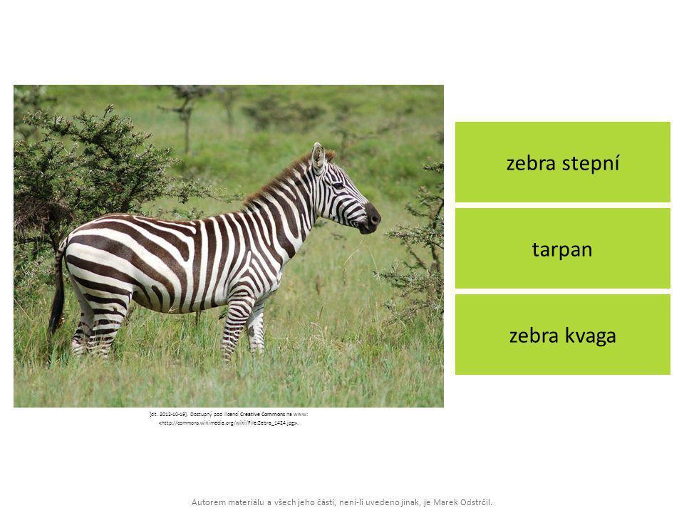 Autorem materiálu a všech jeho částí, není-li uvedeno jinak, je Marek Odstrčil. zebra stepní zebra kvaga tarpan [cit. 2012-10-19]. Dostupný pod licenc