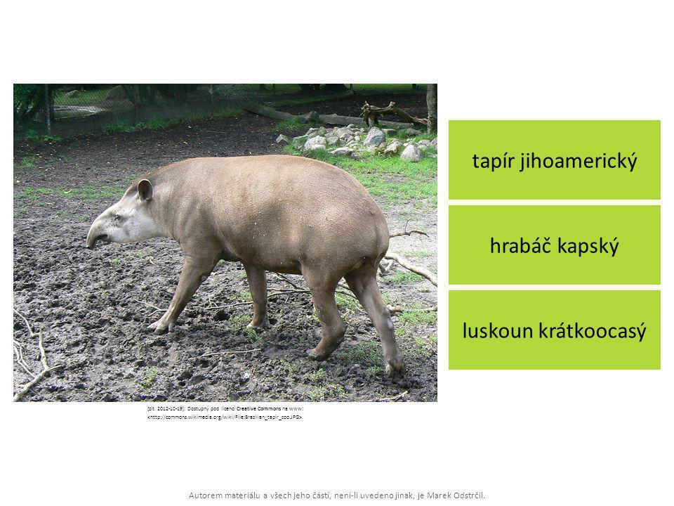 Autorem materiálu a všech jeho částí, není-li uvedeno jinak, je Marek Odstrčil. tapír jihoamerický luskoun krátkoocasý hrabáč kapský [cit. 2012-10-19]