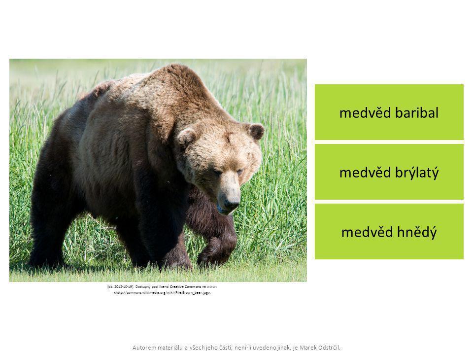Autorem materiálu a všech jeho částí, není-li uvedeno jinak, je Marek Odstrčil. medvěd baribal medvěd hnědý medvěd brýlatý [cit. 2012-10-19]. Dostupný
