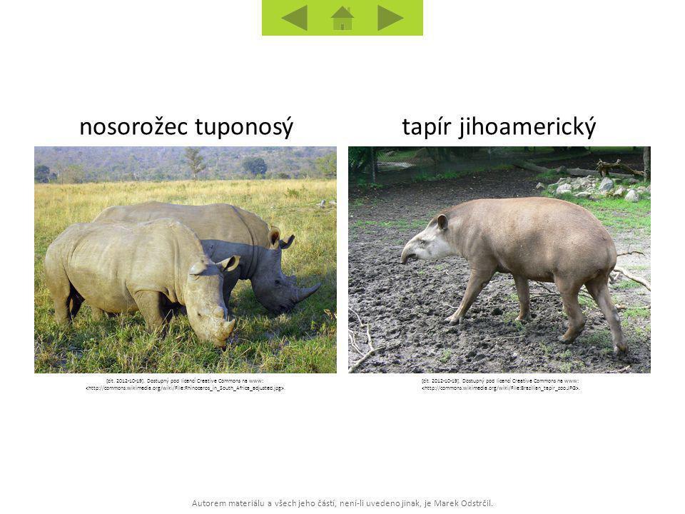 Autorem materiálu a všech jeho částí, není-li uvedeno jinak, je Marek Odstrčil. tapír jihoamerickýnosorožec tuponosý [cit. 2012-10-19]. Dostupný pod l