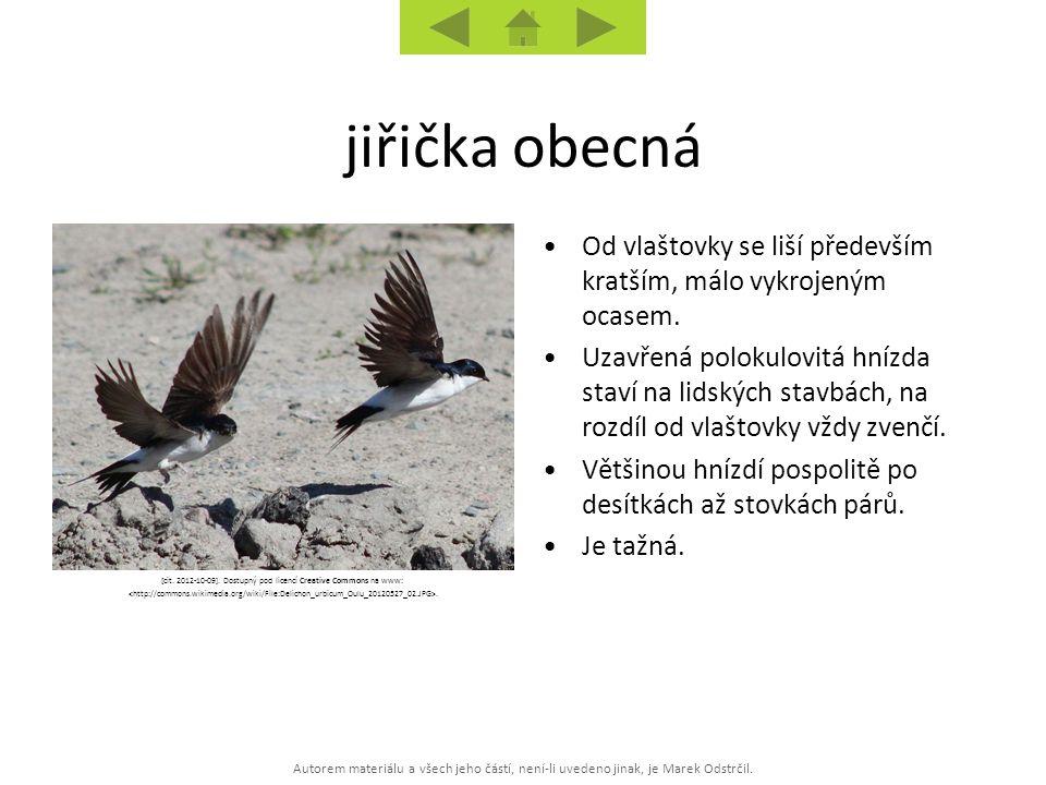 Autorem materiálu a všech jeho částí, není-li uvedeno jinak, je Marek Odstrčil. [cit. 2012-10-09]. Dostupný pod licencí Creative Commons na www:. Od v