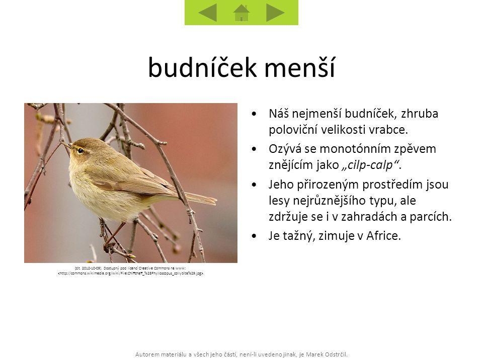 Autorem materiálu a všech jeho částí, není-li uvedeno jinak, je Marek Odstrčil. [cit. 2012-10-09]. Dostupný pod licencí Creative Commons na www:. Náš