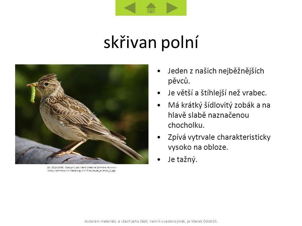 Autorem materiálu a všech jeho částí, není-li uvedeno jinak, je Marek Odstrčil. [cit. 2012-10-09]. Dostupný pod licencí Creative Commons na www:. Jede
