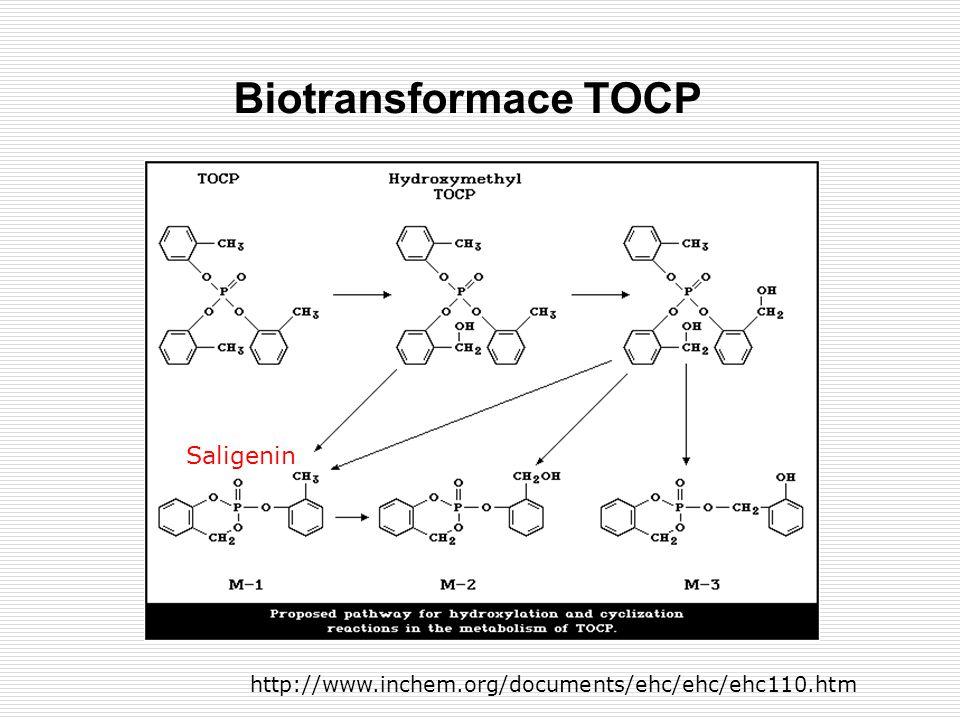 Saligenin Biotransformace TOCP http://www.inchem.org/documents/ehc/ehc/ehc110.htm