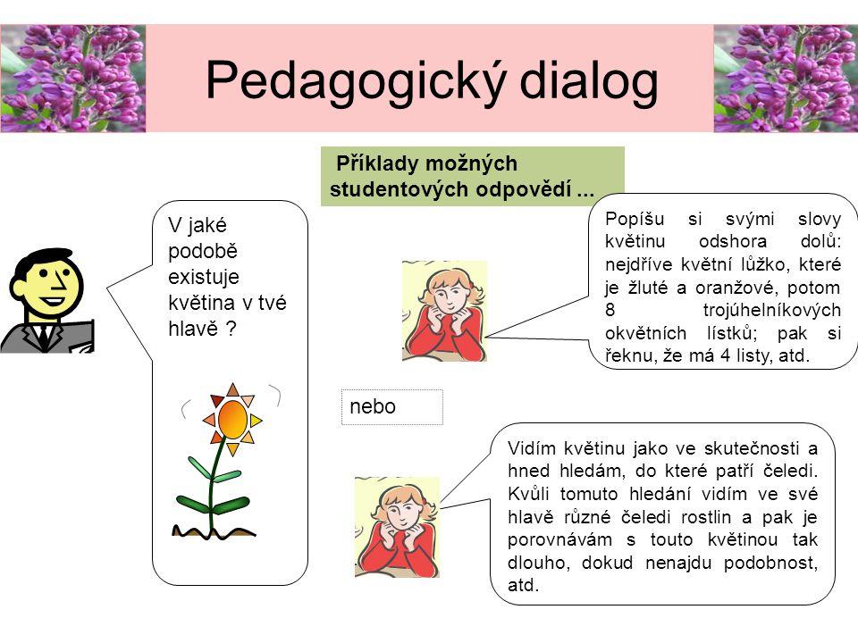 Příklady možných studentových odpovědí... V jaké podobě existuje květina v tvé hlavě ? Popíšu si svými slovy květinu odshora dolů: nejdříve květní lůž