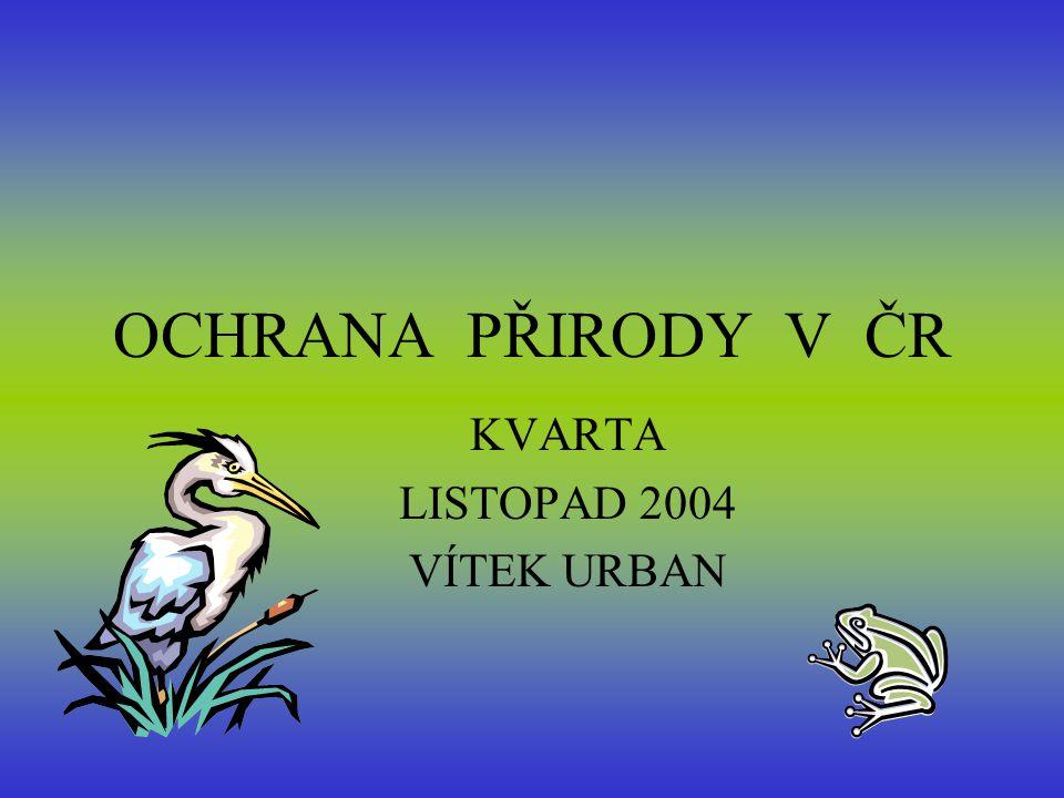 OCHRANA PŘIRODY V ČR KVARTA LISTOPAD 2004 VÍTEK URBAN