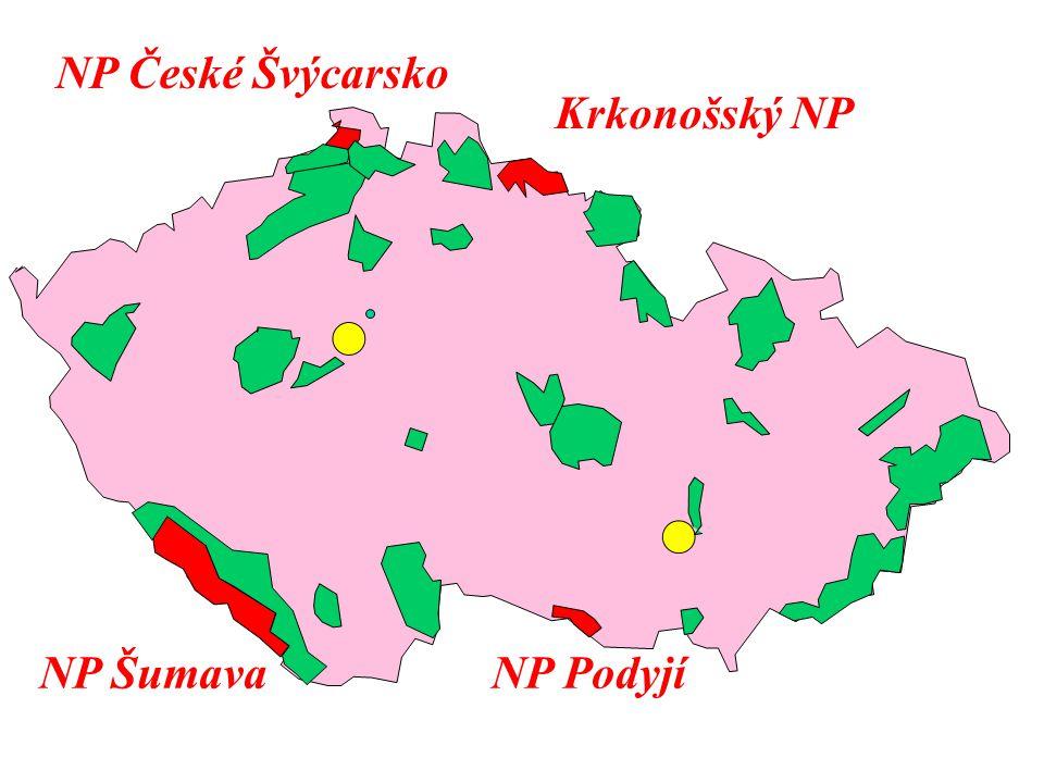 Krkonošský NP NP České Švýcarsko NP ŠumavaNP Podyjí