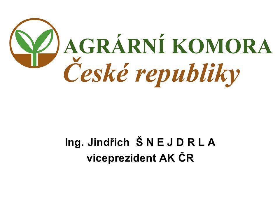 Ing. Jindřich Š N E J D R L A viceprezident AK ČR