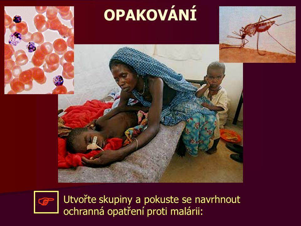 OPAKOVÁNÍ Utvořte skupiny a pokuste se navrhnout ochranná opatření proti malárii: 