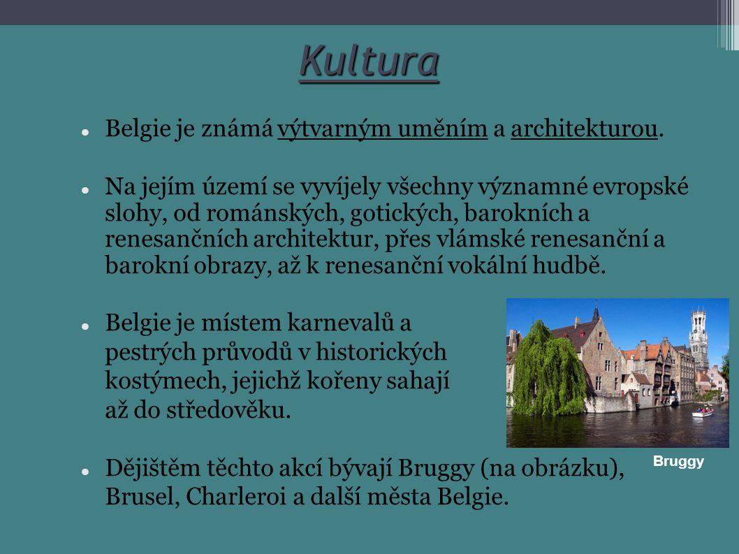 Kultura Belgie je známá výtvarným uměním a architekturou. Na jejím území se vyvíjely všechny významné evropské slohy, od románských, gotických, barokn