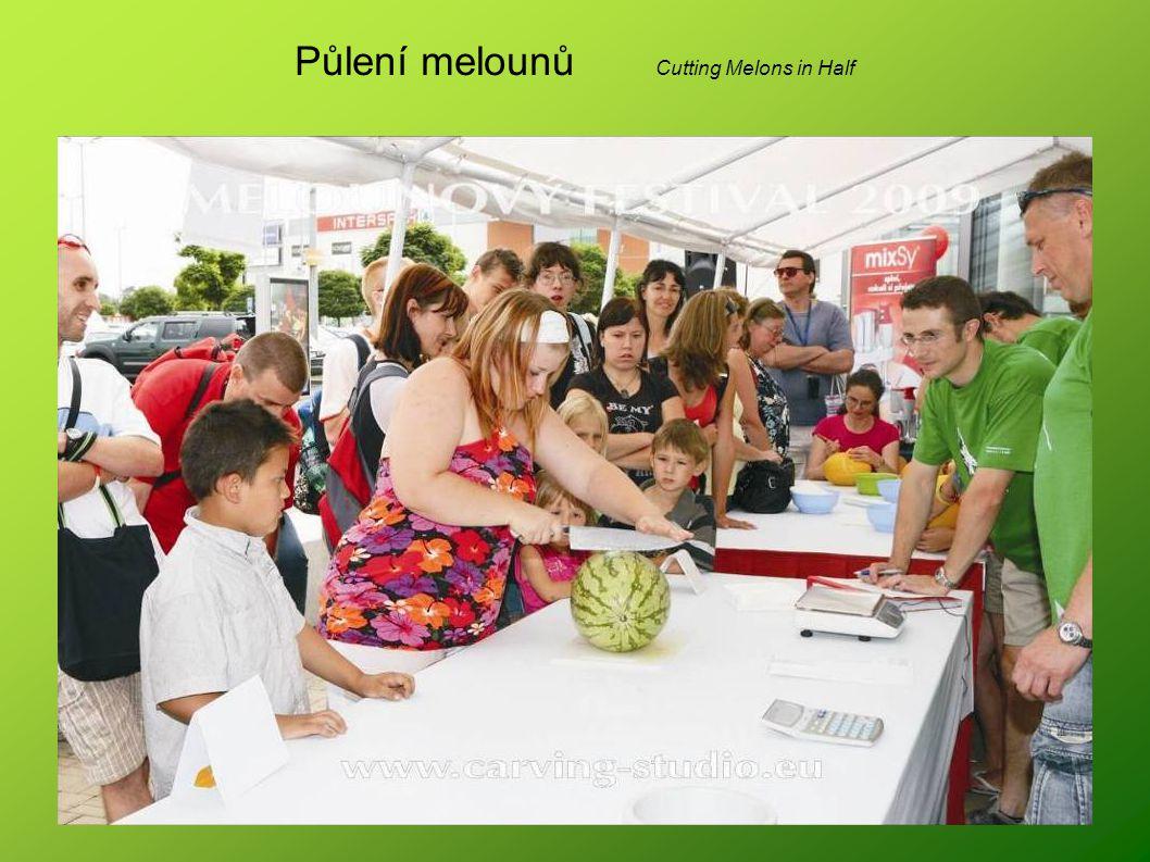 Půlení melounů Cutting Melons in Half