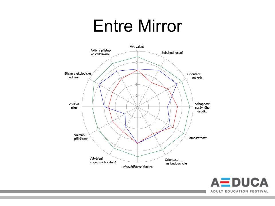 Entre Mirror