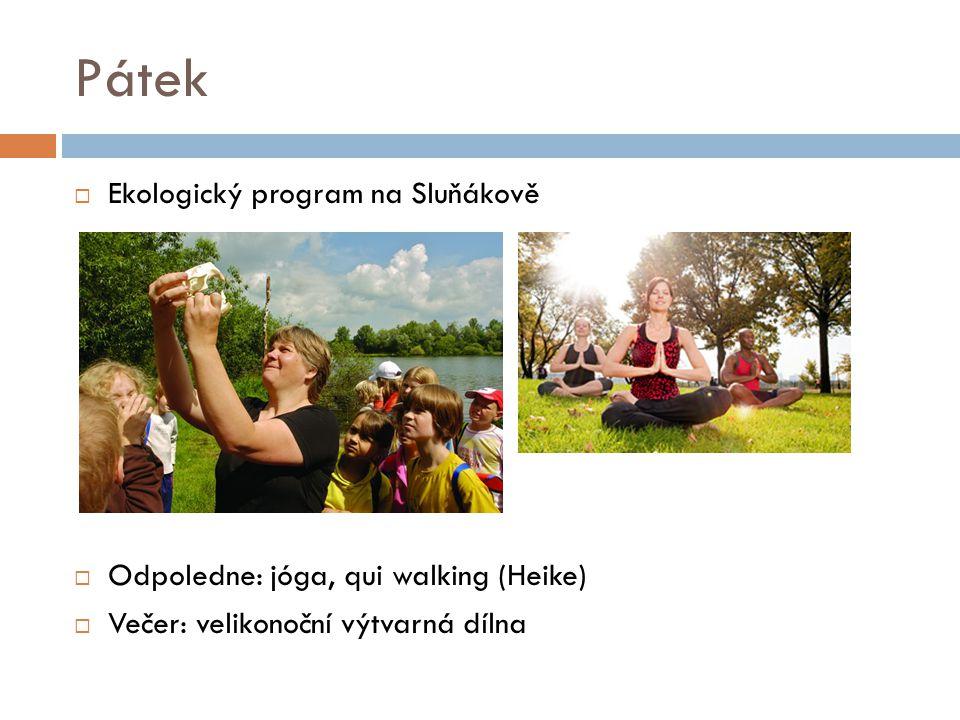 Pátek  Ekologický program na Sluňákově  Odpoledne: jóga, qui walking (Heike)  Večer: velikonoční výtvarná dílna