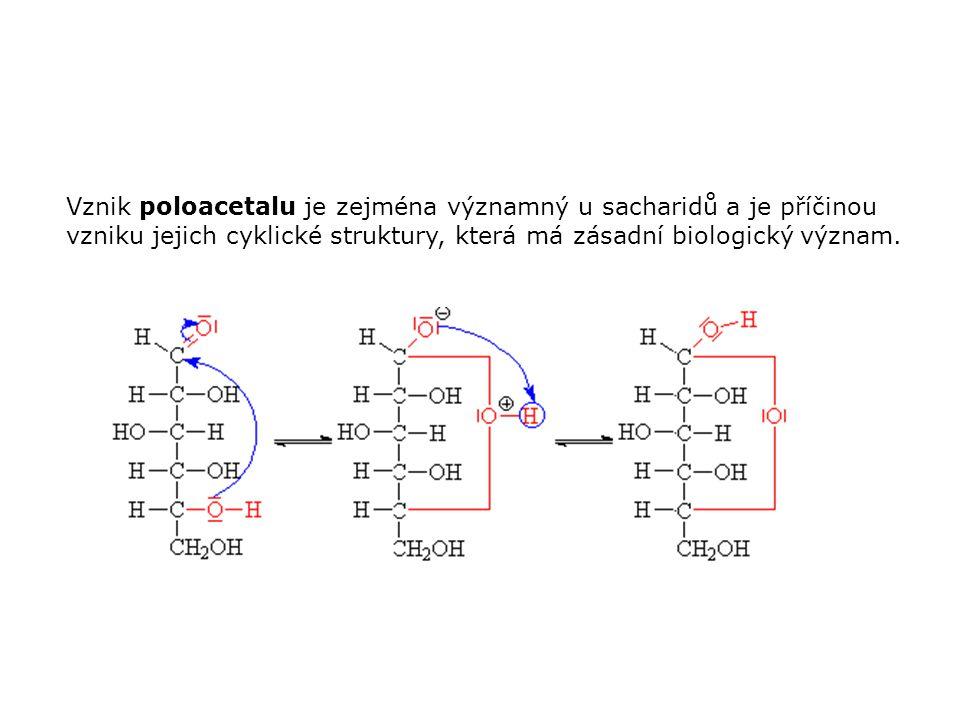 Vznik poloacetalu je zejména významný u sacharidů a je příčinou vzniku jejich cyklické struktury, která má zásadní biologický význam.