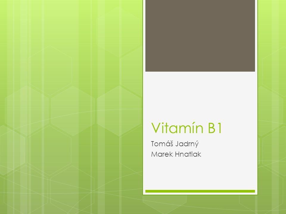 Vitamín B1 Tomáš Jadrný Marek Hnatiak