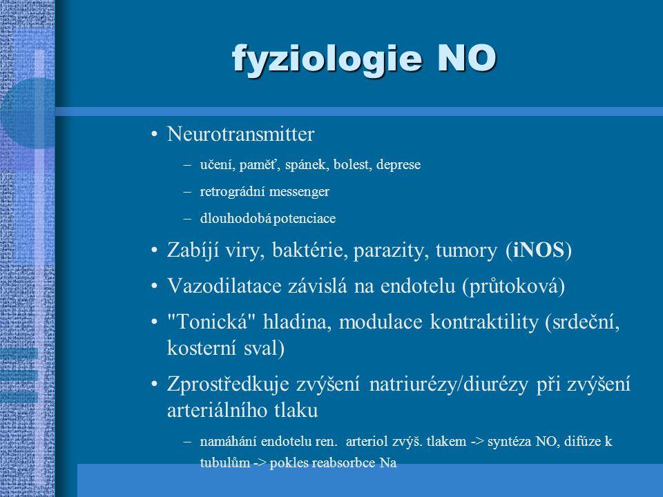 fyziologie NO Neurotransmitter –učení, paměť, spánek, bolest, deprese –retrográdní messenger –dlouhodobá potenciace Zabíjí viry, baktérie, parazity, tumory (iNOS) Vazodilatace závislá na endotelu (průtoková) Tonická hladina, modulace kontraktility (srdeční, kosterní sval) Zprostředkuje zvýšení natriurézy/diurézy při zvýšení arteriálního tlaku –namáhání endotelu ren.