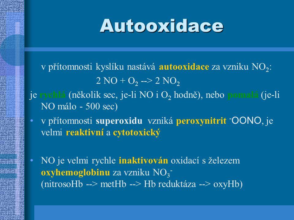 NO syntéza v savčích buňkách je NO tvořen oxidací terminálního dusíku L-argininu molekulárním kyslíkem; za vzniku L-citrulinu L-arg + O 2 --> NO + L-cit