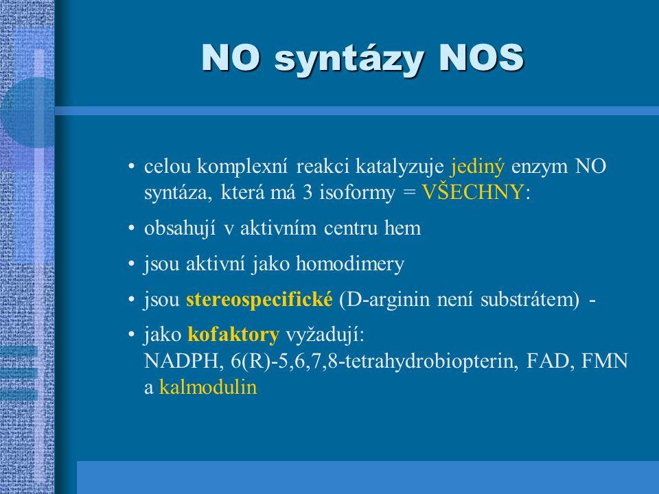 NO syntázy NOS
