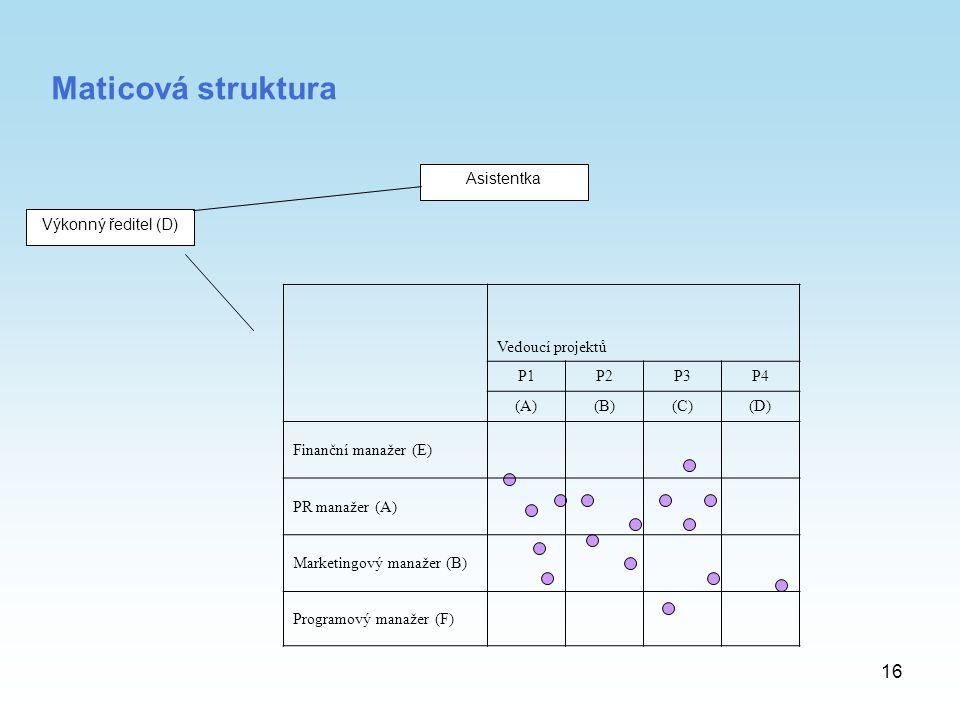 16 Maticová struktura Výkonný ředitel (D) Asistentka Vedoucí projektů P1P2P3P4 (A)(B)(C)(D) Finanční manažer (E) PR manažer (A) Marketingový manažer (