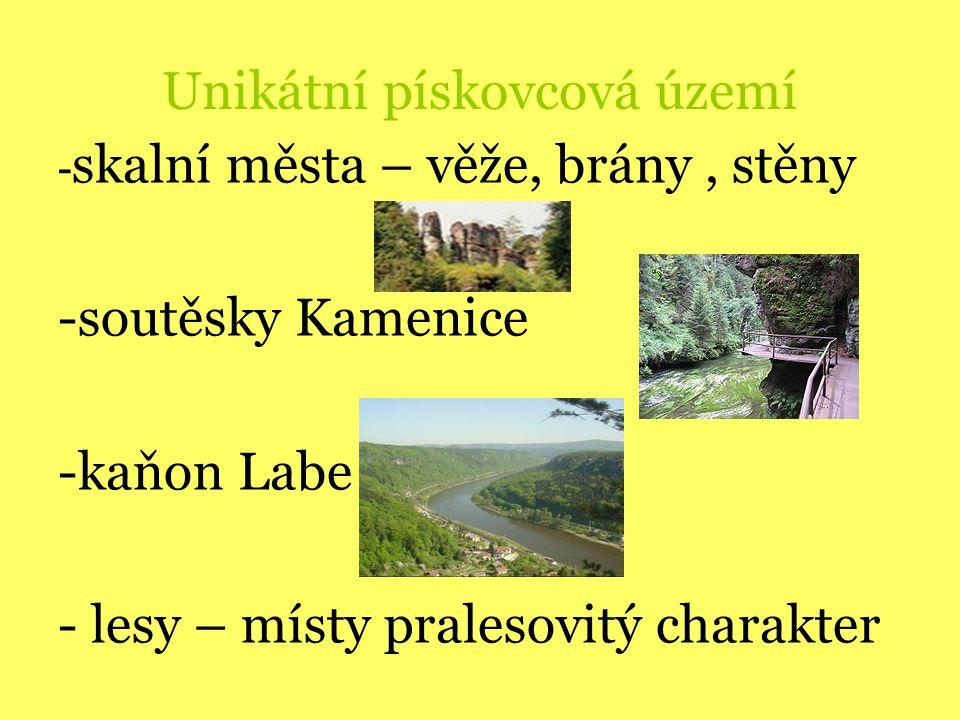 Unikátní pískovcová území - skalní města – věže, brány, stěny -soutěsky Kamenice -kaňon Labe - lesy – místy pralesovitý charakter