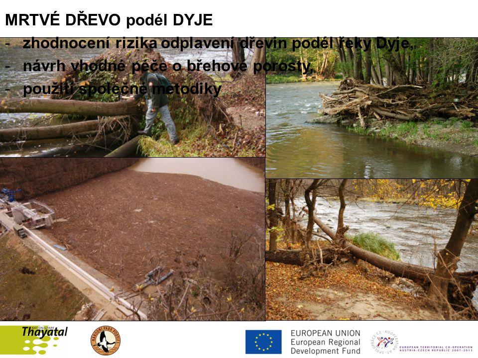MRTVÉ DŘEVO podél DYJE -zhodnocení rizika odplavení dřevin podél řeky Dyje, -návrh vhodné péče o břehové porosty, -použití společné metodiky