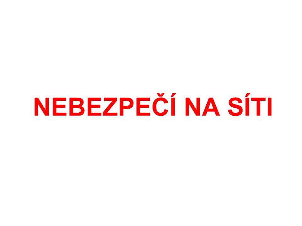 Nebezpečí na síti Vytvořily: Eliška Bazalová a Karolína Čermáková, 14 let ZŠ Třebíč, Týnská 8; 674 01 Třebíč Kategorie: A Forma:4 prezentace Internetová bezpečnost, nebezpečí komunikace, kyberšikana