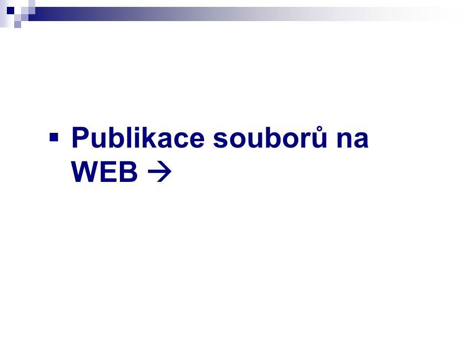  Publikace souborů na WEB 
