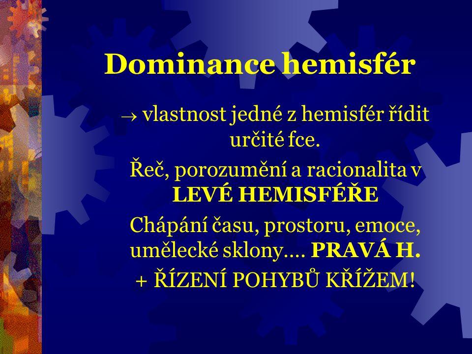 Dominance hemisfér  vlastnost jedné z hemisfér řídit určité fce. Řeč, porozumění a racionalita v LEVÉ HEMISFÉŘE Chápání času, prostoru, emoce, umělec