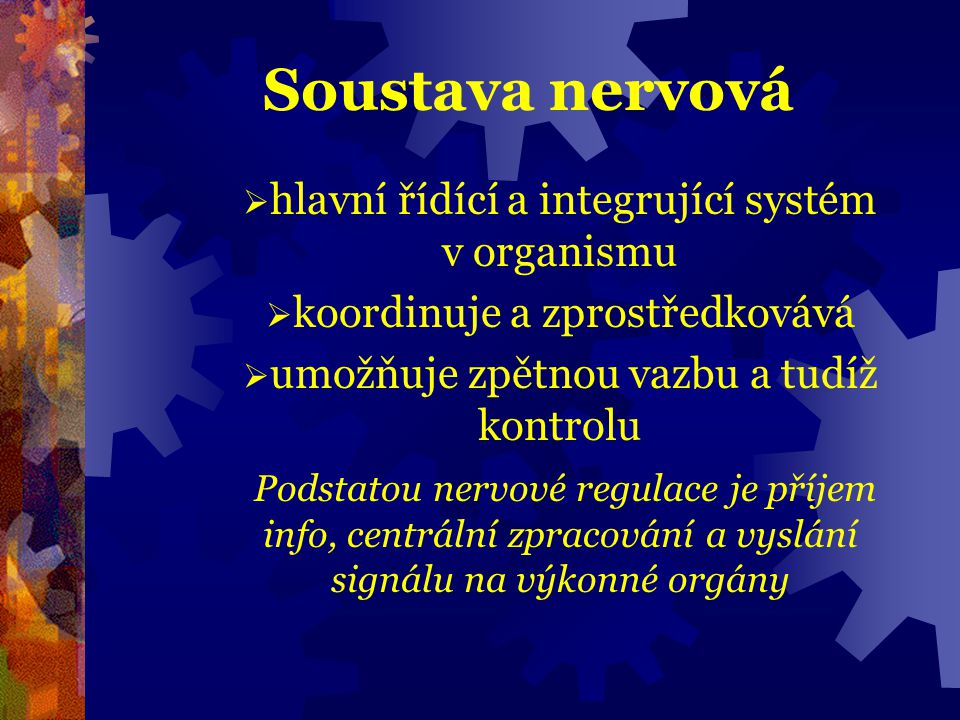 Reflexní oblouk  změny prostředí /stimuly, podněty/ zachycují receptory /první části smyslových orgánů/  podnět podráždí receptor a tím vzniká nervový vzruch a ten se šíří vlákny nervových bň do CNS a odtud po zpracování k výkonnému orgánu /efektor/