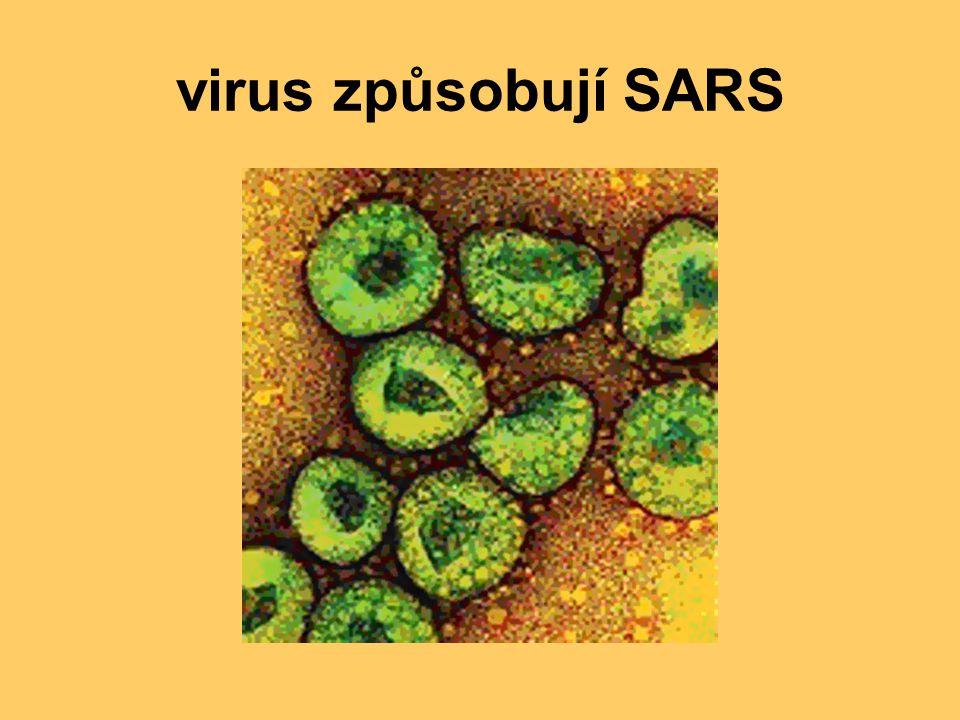 virus způsobují SARS