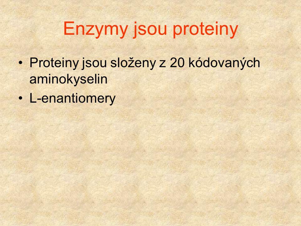 Technické enzymy Proteasy (bakteriální) Syřidla Glukoamylasy Alfa-amylasy Glukosaisomerasy