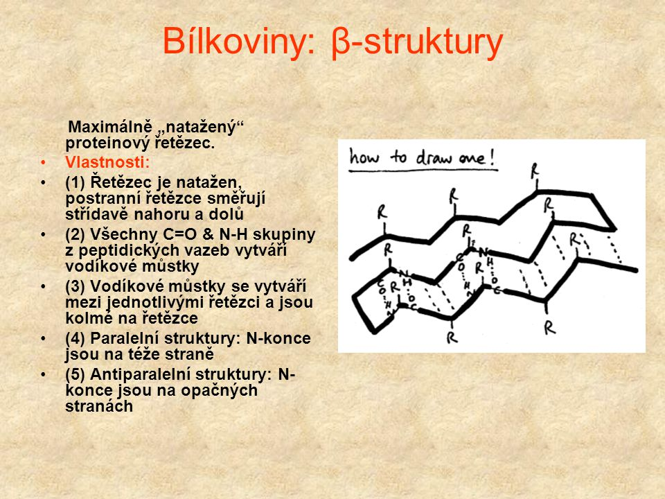 Bílkoviny: α-helix