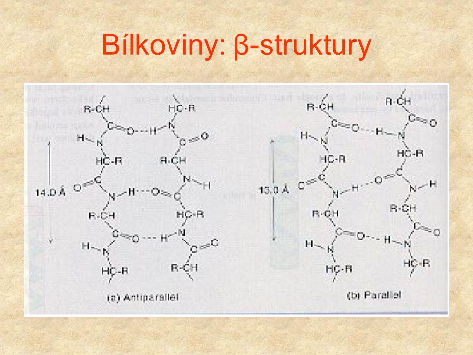 """Bílkoviny: β-struktury Maximálně """"natažený"""" proteinový řetězec. Vlastnosti: (1) Řetězec je natažen, postranní řetězce směřují střídavě nahoru a dolů ("""