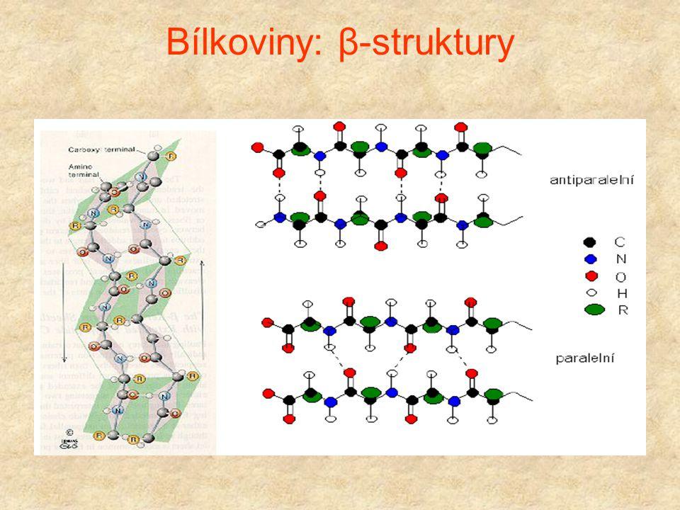 Bílkoviny: β-struktury