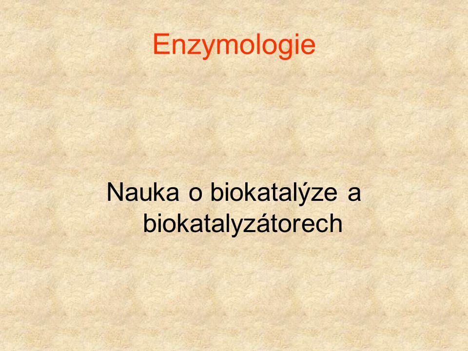 Kde najdu informace? http://www.usbe.cas.cz/people/safarik/ Stránky v češtině Přednášky na Jihočeské universitě v Českých BudějovicíchPřednášky na Jih