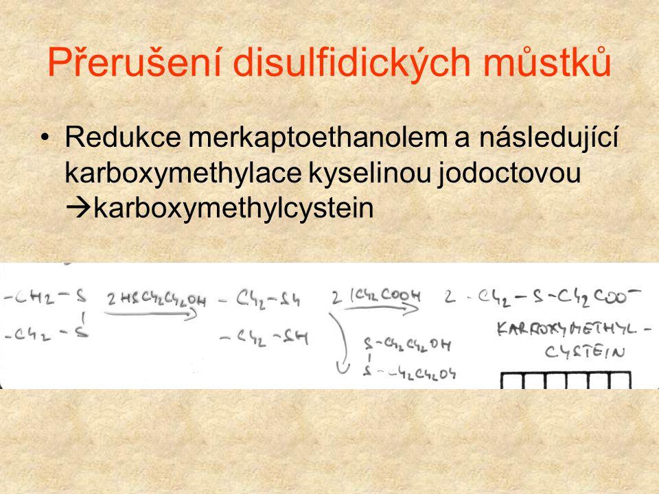 Přerušení disulfidických můstků Tvořeny cysteinem Uvolnění jednotlivých řetězců Oxidace kyselinou permravenčí na kys. cysteovou