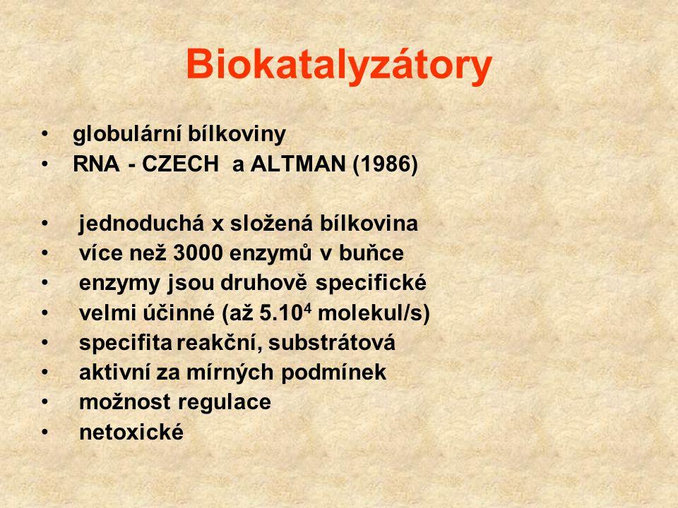 Katalýza Katalýza - Berzelius 1838 Katalyzátor látky urychlující chemické reakce nemění rovnováhu chemických reakcí snižují aktivační energii